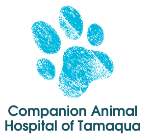 Companion Animal Hospital of Tamaqua